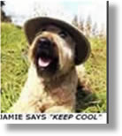 Jamie says Keep Cool