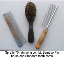 combs and brush